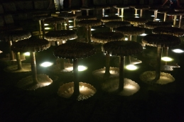 The mushroom fountain