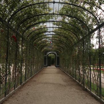 The gardens at Schonbrunn