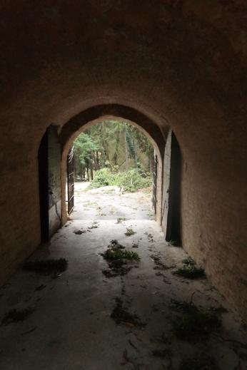 The doorway to the Citadel