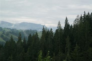 The gorgeous view