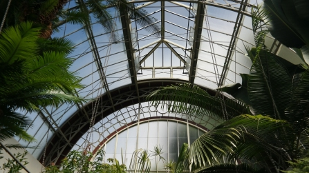 Inside one of the glasshouses