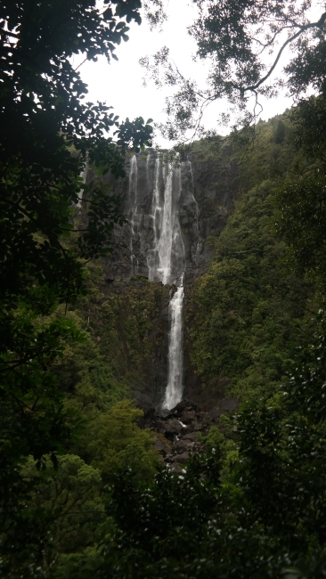 View of the falls from the lookout