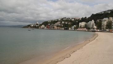 A beach near Wellington's centre
