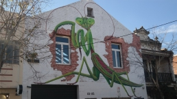 Praying Mantis street art